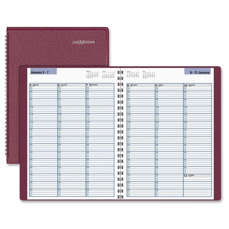 At-A-Glance At-A-Glance Professional Appointment Book G520-14 AAGG52014