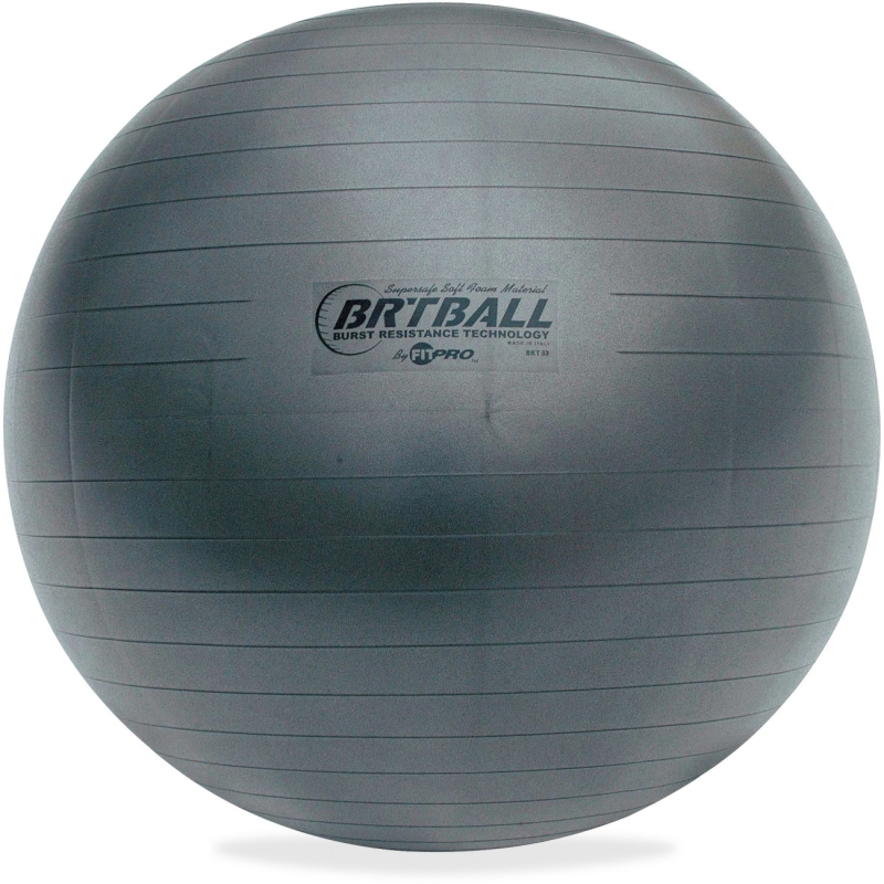 Champion Sports Gray Training/Exercise Ball BRT65 CSIBRT65