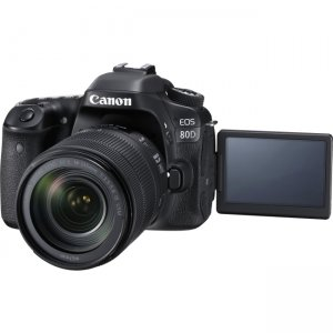 Canon EOS Digital SLR Camera with Lens 1236C006 80D