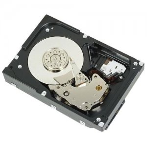 DELL 1 TB 7.2K RPM SATA 6Gbps 3.5in Cabled Hard Drive 400-APEH