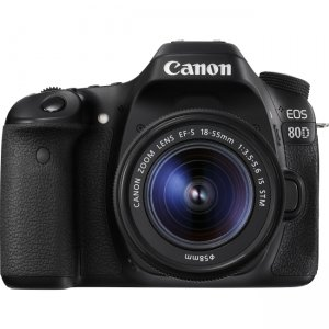 Canon EOS Digital SLR Camera with Lens 1263C005 80D