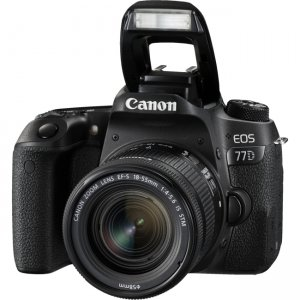 Canon EOS Digital SLR Camera with Lens 1892C016 77D