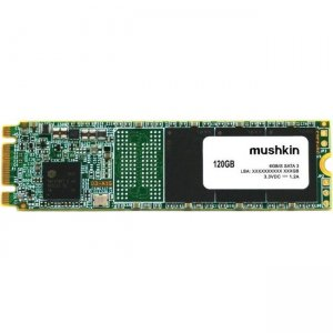 Mushkin Source Solid State Drive MKNSSDSR120GB