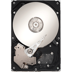 Seagate Serial ATA/300 Internal Hard Drive ST310005N1A1AS-RK