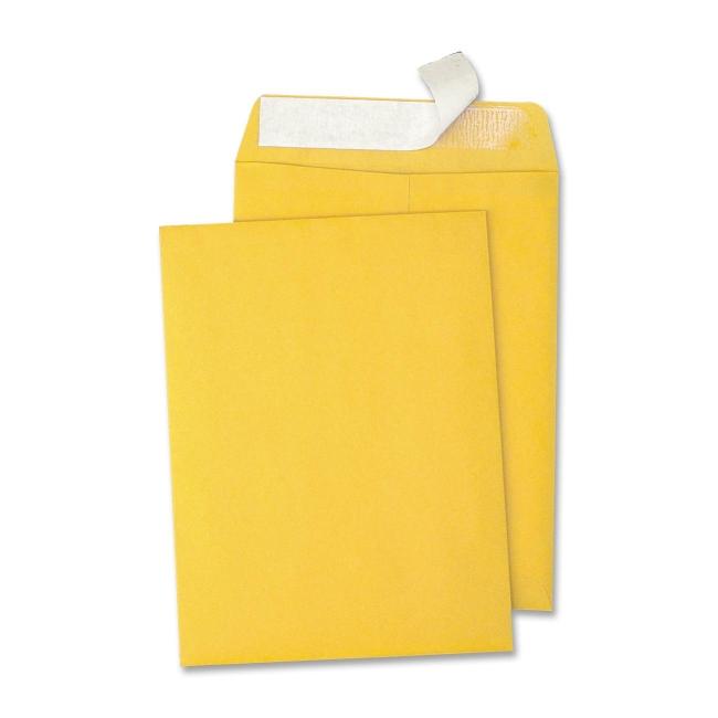 Quality Park Redi-Strip Catalog Envelope 44162 QUA44162