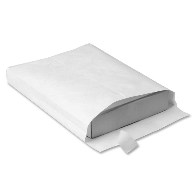 Quality Park Plain Expansion Envelopes R4202 QUAR4202