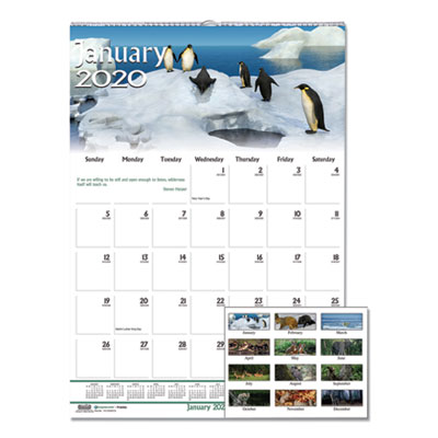 House of Doolittle Recycled Wildlife Scenes Monthly Wall Calendar, 12 x 12, 2020 HOD3731 3731