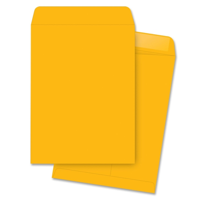 Business Source Catalog Envelope 42116