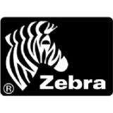 Zebra Print Server P1031031