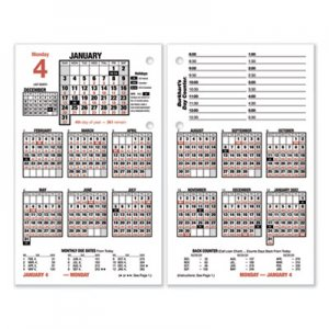 At-A-Glance Burkhart's Day Counter Desk Calendar Refill, 4.5 x 7.38, White, 2021 AAGE71250 E712-50