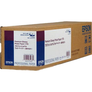 Epson Premium Glossy Photo Paper S042076