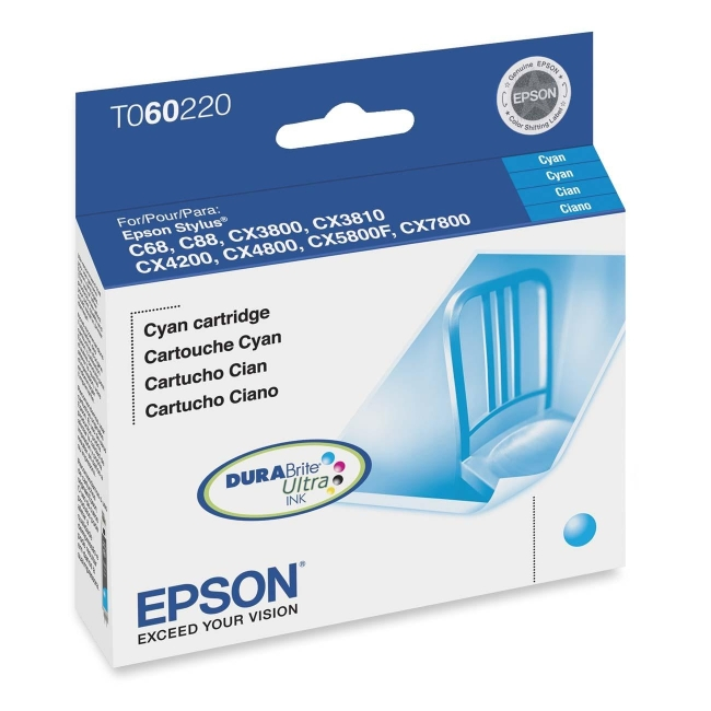 Epson Ink Cartridge T060220
