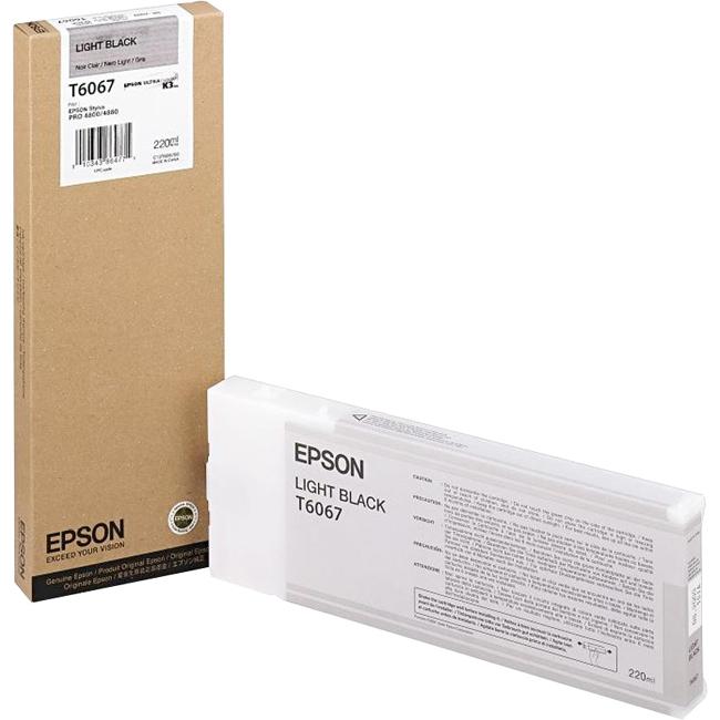 Epson Light Black Ink Cartridge T606700