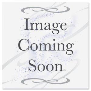 Diversey Beer Clean Last Rinse Glass Sanitizer, Powder, .25oz Packet, 100/Carton DVO90223 90223