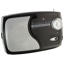 WeatherX Weather & Alert Radio WR282B