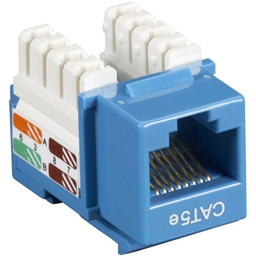Black Box CAT5e Value Line Keystone Jack, Blue, 10-Pack CAT5EJ-BL-10PAK