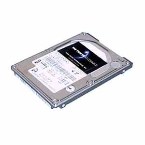Total Micro Serial ATA Internal Hard Drive 250GI2S-TM
