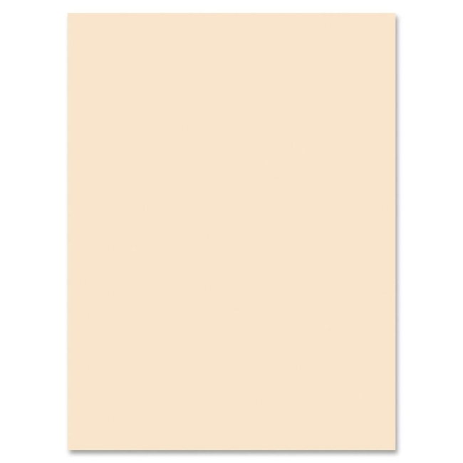 Pacon Medium Weight Tagboard Paper 5190 PAC5190