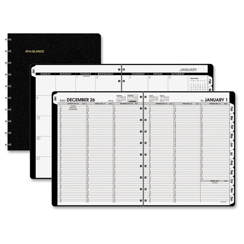 At-A-Glance Large Pro Weekly/Monthly with Poly Cover 70950E05 AAG70950E05