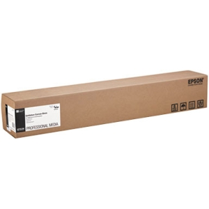 Epson Signature Worthy Exhibition Canvas S045244