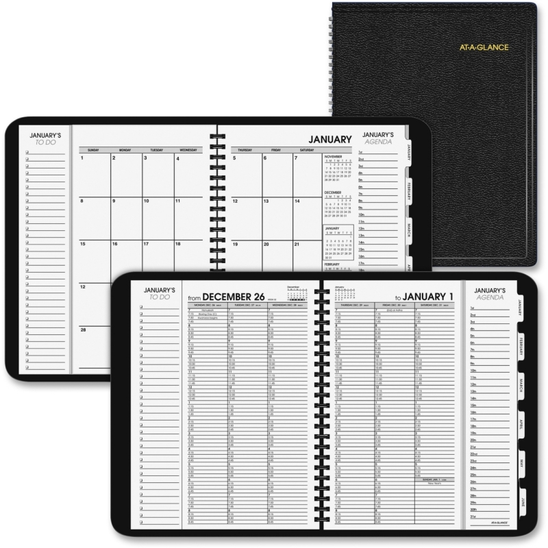 At-A-Glance At-A-Glance Triple View Weekly/Monthly Appointment Book 70-950V-05 AAG70950V05