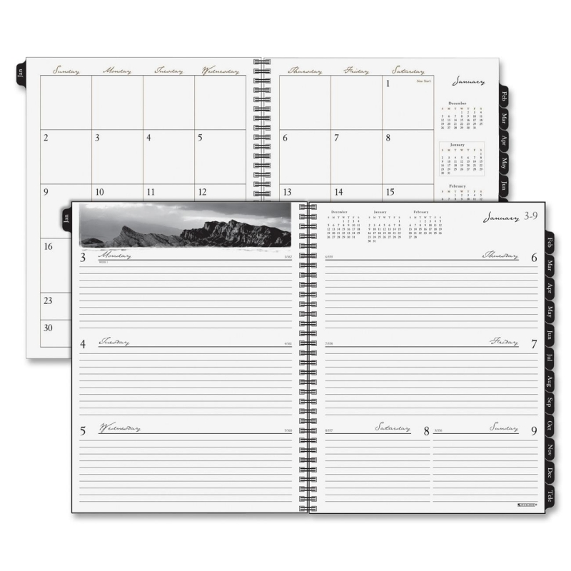 At-A-Glance At-A-Glance Executive Professional Weekly and Monthly Planner Refill 70-915-10 AAG7091510