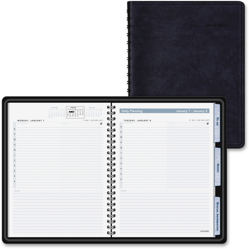 At-A-Glance At-A-Glance Action Planner Daily Appointment Book 70-EP03-05 AAG70EP0305