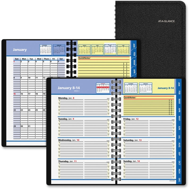 At-A-Glance At-A-Glance QuickNotes Self-Management System Planner 76-02-05 AAG760205