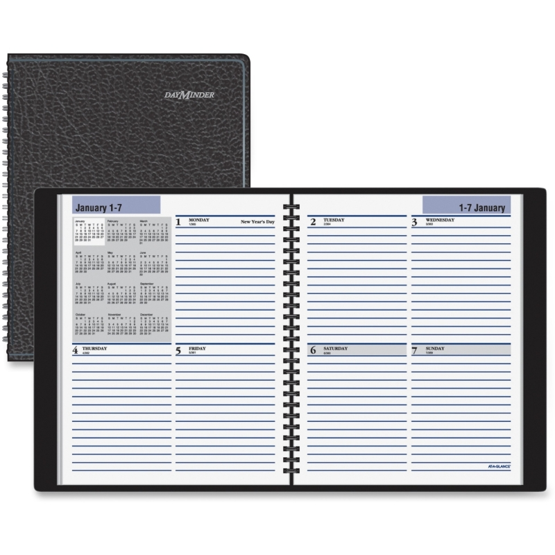 At-A-Glance At-A-Glance DayMinder Professional Weekly Planner G535-00 AAGG53500