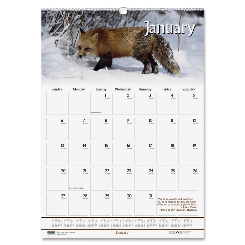 House of Doolittle Earthscapes Wildlife Wall Calendar 373 HOD373
