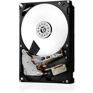 HGST Ultrastar 7K6000 Hard Drive 0F22961 HUS726020ALS214