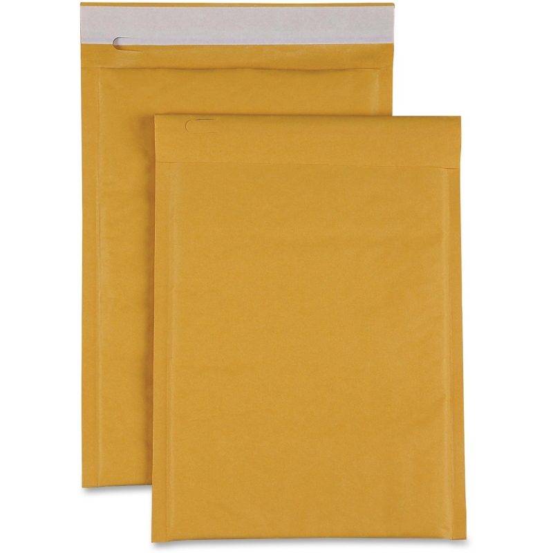 Sparco Size 00 Bubble Cushioned Mailers 74979 SPR74979