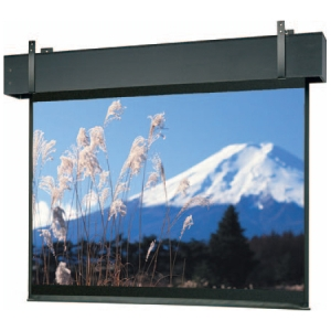 Da-Lite Professional Electrol Projection Screen 38698