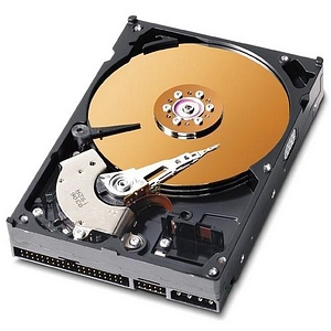 Western Digital Caviar Special Edition Hard Drive WD2500JB