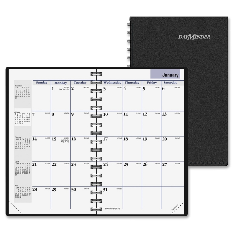 At-A-Glance DayMinder Pocket Planner G450-00 AAGG45000