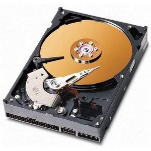 WD Caviar SE Hard Drive WD3200JB