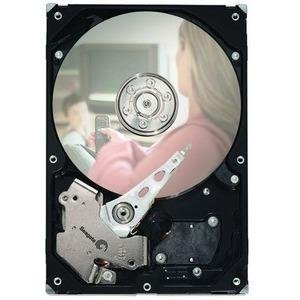 Seagate-IMSourcing DB35.4 Hard Drive ST3250310CS