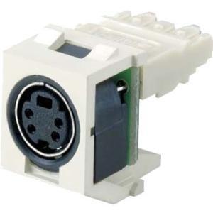 Panduit NetKey Video Connector NKSPMIG