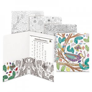 Smead Two-Pocket Coloring Folder, 11 x 8 1/2, Assorted Designs, 12/Pack SMD87951 87951
