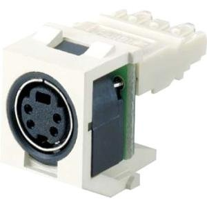 Panduit S-Video Video Connector NKSPMIW