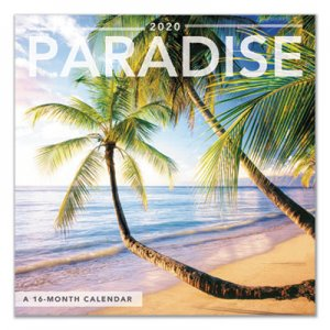 At-A-Glance Day Dream Paradise Mini Wall Calendar, 7 x 7, 2019 AAGDDMN45 DDMN45