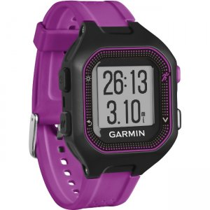 Garmin Forerunner GPS Watch 010-01353-20 25