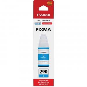 Canon PIXMA GI-290 Ink Bottle GI290C CNMGI290C