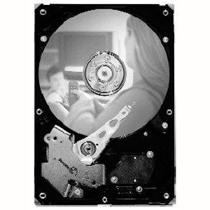 Seagate SV35.5 Hard Drive - Refurbished ST31000525SV-RF ST31000525SV