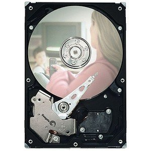 Seagate DB35 Series 7200.3 Hard Drive - Refurbished ST3160215SCE-RF ST3160215SCE