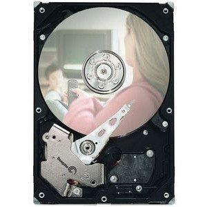 Seagate DB35 7200.2 Hard Drive - Refurbished ST3160212SCE-RF ST3160212SCE