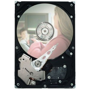 Seagate DB35 Series 7200.3 Hard Drive - Refurbished ST3160215ACE-RF ST3160215ACE