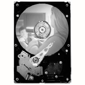 Seagate SV35.2 Series Hard Drive - Refurbished ST3500630SV-RF ST3500630SV