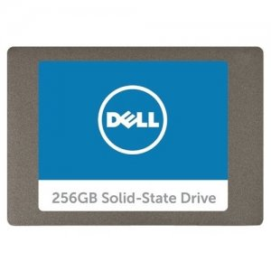 Dell Technologies Serial ATA Solid State Hard Drive - 256 GB SNP110S/256G
