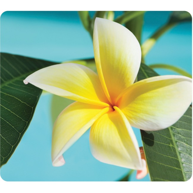 Fellowes Recycled Optical Mouse Pad - Yellow Flower 5913801